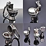 eShop24x7 Chrome Plated Steel Imported COMMODE TOILET key chain / key ring / keychain / keyring