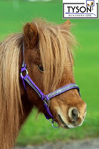 Glitzer Halfter Lila Bling w.Strass Nylon Minishetty Shetty Jährling FohlenPony VB WB Extra Full Tysons ! (Warmblut) (Pony)