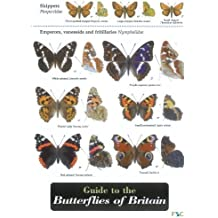 By John Bebbington Guide to the Butterflies of Britain (Field Studies Council Occasional Publications)