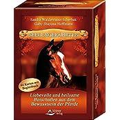 Seelengefährten: Liebevolle und heilsame Botschaften aus dem Bewusstsein der Pferde - 44 Karten mit Begleitbuch