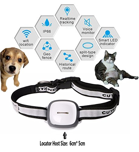 Price comparison product image Dax-Hub Mini GPS Tracker for medium large PET Dog Puppy Fashion; Web/WiFi Enabled QR Code GPRS Tracer Locator with braised Collar Tracking Platform for Hike Training (Pet GPS, Size: 6cm* 5cm* 2.5cm, fit for Big dogs)