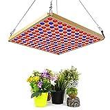 TOPLANET Luce per Piante 45W LED Grow Pannel Rosso Blu Lampada Led Coltivazione per Grow Box/Idroponica Kit/Serra/Interno Veg Fiore Crescita