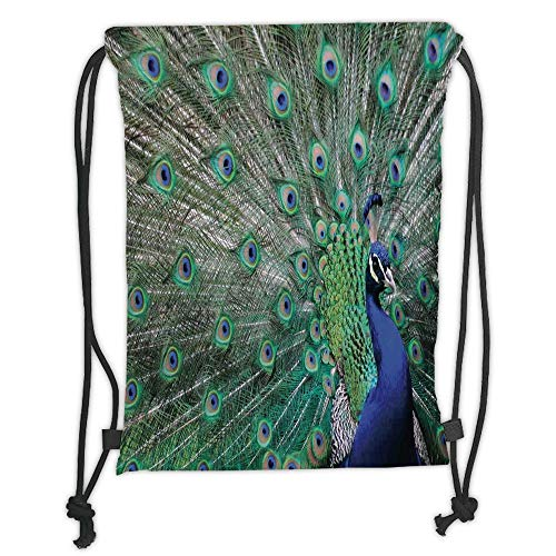 GONIESA Drawstring Sack Backpacks Bags,Peacock,Peacock Displaying Elongated Majestic Feathers Open Wings Picture,Navy Blue Green Light Brown Soft Satin,5 Liter Capacity,Adjustable String Closur (Feathers Displaying Peacock)