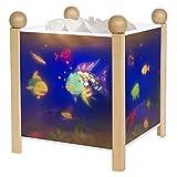 Trousselier - Poisson Arc en Ciel - Rainbow Fish - Veilleuse - Lanterne Magique -...