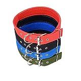 LA VIE Hundehalsband Einstellbar Massiv und Langlebige Nylon Basic Halsband Dressurhalsung für Kleine Mittlere und Große Hunde XXL Rot