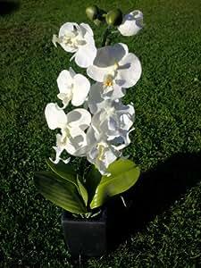 Orchidée Blanc orchidées artificielles dans un grand Pot de fleurs carré Noir Décoration maison/bureau