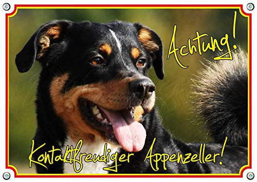 Petsigns Hundeschild Appenzeller Sennenhund - Vorsicht! haltbare Qualität aus 1,5 mm Metallplatte, 1. DIN A5