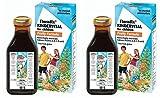 (2 Pack) - Floradix - Kindervital Fruity fo Children | 250ml | 2 PACK BUNDLE