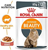 ROYAL CANIN FELINE CARE NUTRITION INTENSE BEAUTY GRAVY CAT WET FOOD - 12 POUCHES