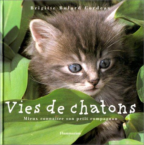 Vies de chatons : Mieux connaître son petit compagnon