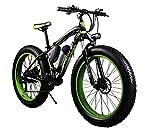 Bici elettriche da uomo Cruiser fat bicicletta RT012 350 W * 36 V * 10.4ah fat tire 26'' * 4.0'' pollici 21 variazioni di velocità Shimano Dearilleur litio-ione batteria verde
