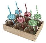 Bada Bing 6er Set Trinkglas Karo Deckel Strohhalm und Holz Tablett + Obst Fibel