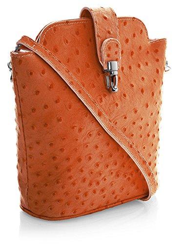 Big Handbag Shop kleine Damen Cross-Body-Tasche aus echtem Leder, imitiertes Straußenleder (V122 Orange) (Handtasche Straußenleder)