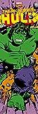 Empire Affiche de porte Motif Marvel Hulk modification