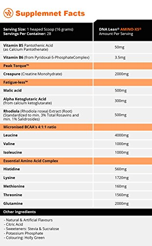 DNA Lean Amino-XS Advanced Branched Chain Amino Acids (BCAA) And Essential Amino Acid (EAA) Intra Workout Drink 448 grams (GREEN APPLE)