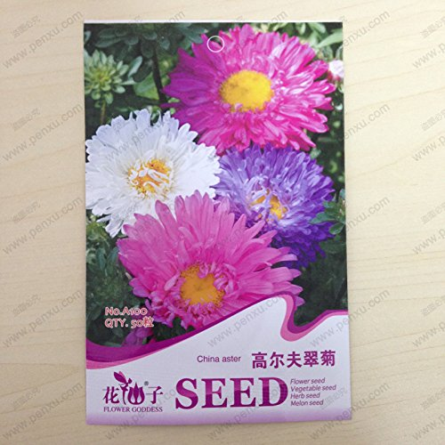 home-garden-20-seeds-african-marigold-crackerjack-mixed-color-tagetes-erecta-flower-seeds