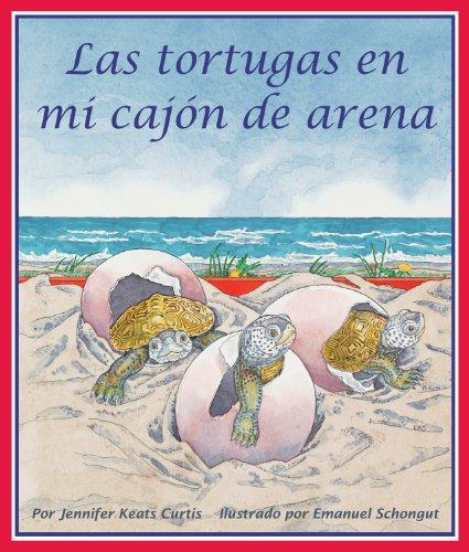 Las tortugas en mi cajón de arena (Spanish Edition)