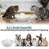 Hommii Trinkbrunnen Keramik für Katzen Hunde Haustier Automatisch Wasserbrunnen mit Kohlefilter 2,1L Lotus/Kugel Katzenbrunnen Wasserspender Brunnen Katze Keramik Filter Pet Fountain - 6