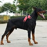 Chaleco Arnés para Mascotas Perro--Treat Me Ajustable Suave Seguridad Arnés de Perro Todos Tamaños 3 Colores