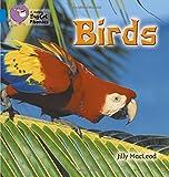 Birds: Band 04/Blue (Collins Big Cat Phonics)