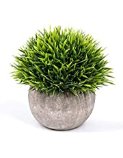 RaajaOutlets Artificial Table Decoration Plants ( Green, Plastic)