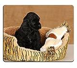 Liili Mauspad Naturkautschuk Mousepad Welpe in Hundebett Sieben Woche Old American Cocker Spaniel Puppy Bild-ID 10973012