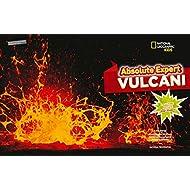 Absolute-expert-vulcani