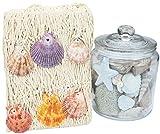 com-four® Maritimes Deko-Set, Fischnetz mit Muscheln, Glas mit Tischdeko [Farbe variiert] (Set - Dekoglas/Fischernetz)