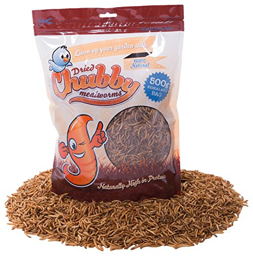 Chubby Mealworms CPP82020