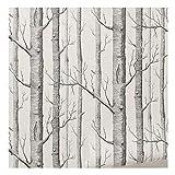 Coomir bouleaux Papier Peint Moderne Rouleau de Papier Mural de décoration Forest Wood Fonds d'écran pour Chambre à Coucher Salle de séjour