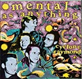 Songtexte von Mental as Anything - Cyclone Raymond