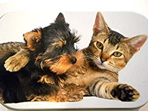 new slim 1oz hinged cute kitten cat and puppy dog tobacco baccy tin with rolling papers