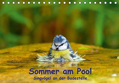 Sommer am Pool - Singvögel an der Badestelle (Tischkalender 2019 DIN A5 quer): Badende Singvögel im Garten (Monatskalender, 14 Seiten ) (CALVENDO Tiere)