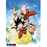 Abystyle Abysse Corp _ ABYDCO319Dragon Ball–Poster dB/gruppo (52x 38)