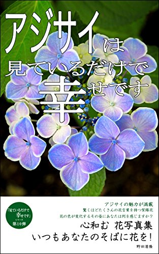 hydrangea-collection-of-photographs-a-photo-collection-of-relaxing-flowers-miteirudakedeshiawasedesu