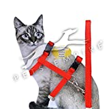 #6: Pets Empire Rabbit Cat Kitten Puppy Dog Adjustable Harness Collar Animal Walking Lead Pet Leash(Red)