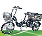 250W ElektroDreirad Elektro Dreirad Elektrofahrrad Jorcy 15 Li-ion Akku bis 25km/h