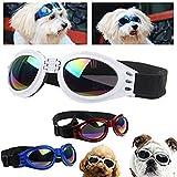 Hundebrille Cabriobrille - Sonnenbrille für Hunde Schwarz