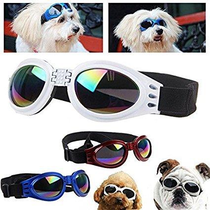 Hundebrille Cabriobrille - Sonnenbrille für Hunde Rot