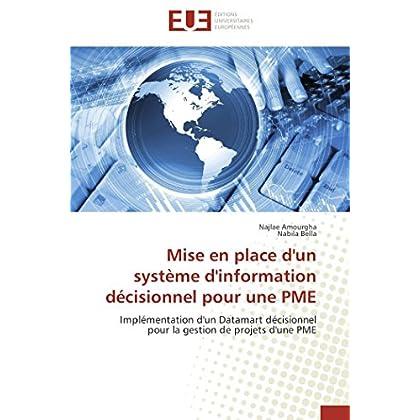 Mise en place d'un système d'information décisionnel pour une pme
