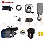 Humser™ Pedal Electric Rickshaw Conversion Kit 48V 750W, (BLDC) Traction Motor (Silver)