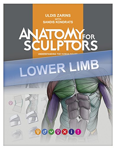 Lower Limb Anatomy For Artists: Understanding the human form (Anatomy For Sculptors Book 4) (English Edition) por Uldis Zarins
