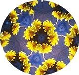 Kaleidoskop / Messing poliert / Fängt die Farben der Umgebung ein / 18 cm lang von Schaepers Kaleidoskope