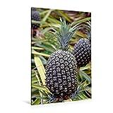 Premium Textil-Leinwand 80 cm x 120 cm hoch, Ananas, Oahu | Wandbild, Bild auf Keilrahmen, Fertigbild auf echter Leinwand, Leinwanddruck (CALVENDO Natur)
