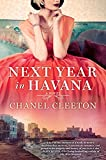 Best Fiction Of The Years - Next Year in Havana Review