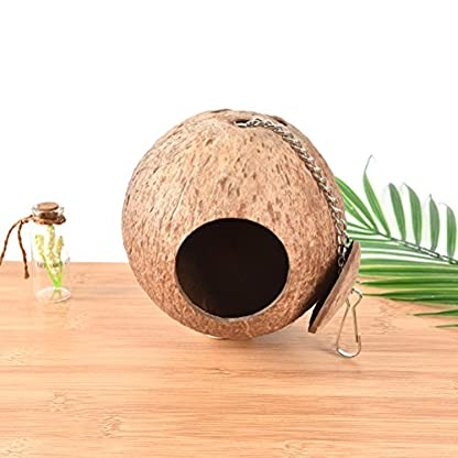 CCCYMM 1 Pcs Hand Made Natural Coconut Shell Creative Bird Nest House Hut Cage Feeder Pet Parrot Parakeet Toy 3