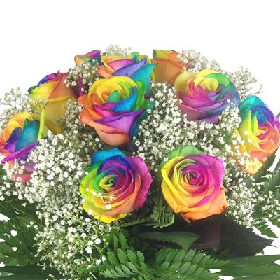 hundeinfo24.de Bunter Blumenstrauß mit 10 Regenbogenrosen