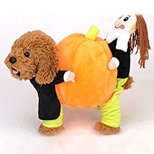 Kicode Vêtements pour chien de citrouille Halloween Pumpkin Four Feet Pumpkin Pet Dog Clothes Puppy Festival Christmas Xmas Soft Cotton Pumpkin Fancy Costume Dressing coton doux Fancy Costume dressing
