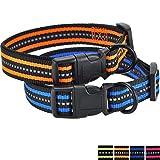 Mile High Life Night Reflektierende Doppelstreifen Nylon Hundehalsband (2 Pack Blau/Orange, Großer Hals 41cm - 53cm - 24 KG)