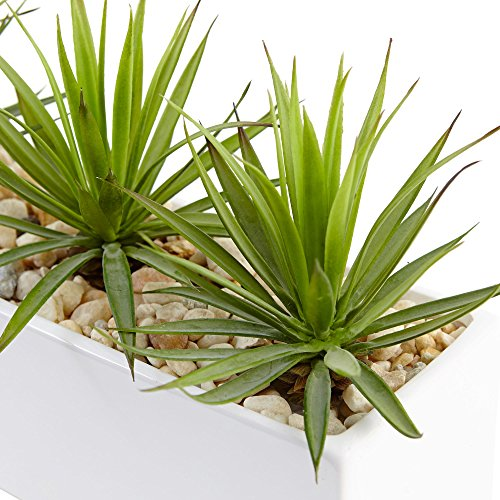 Fast natur mini Agave Kunstpflanze in rechteckig aus Keramik, grün